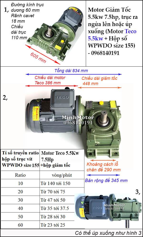 Motor 3 Pha Teco trục ngửa hoặc úp