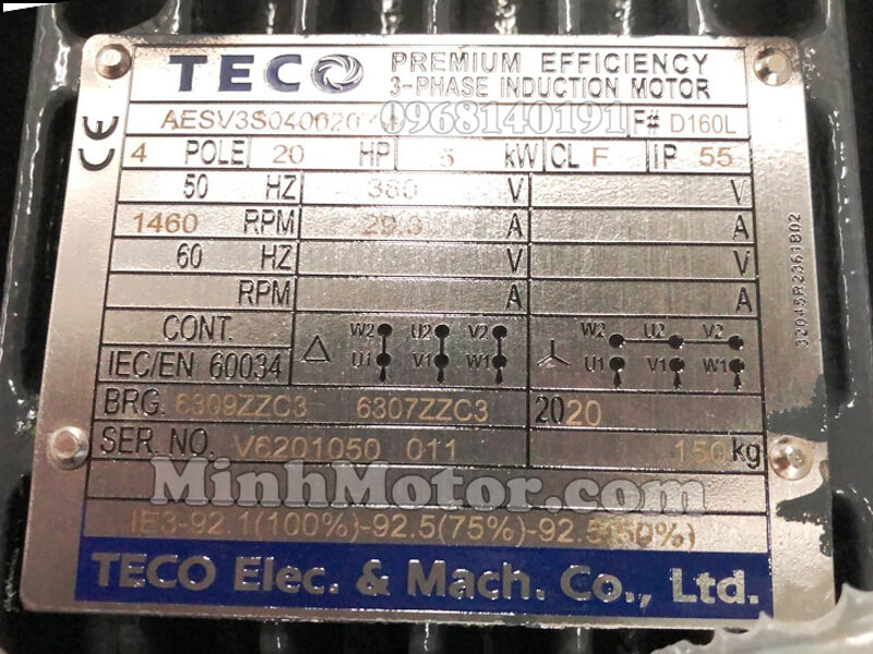 Thông số kỹ thuật tem motor Teco IE3