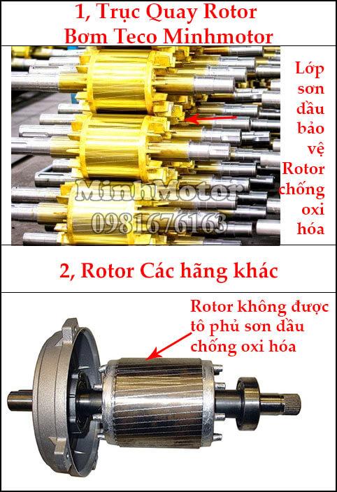 Rotor bơm teco