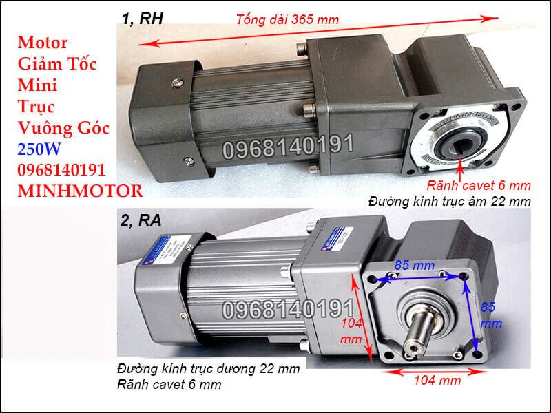 Motor 3 pha mini RH - RA 250W