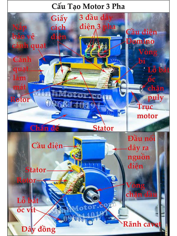 Cấu tạo motor 3 pha