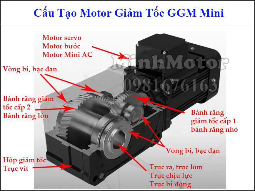 Motor GGM cốt trục ngang liền hộp số