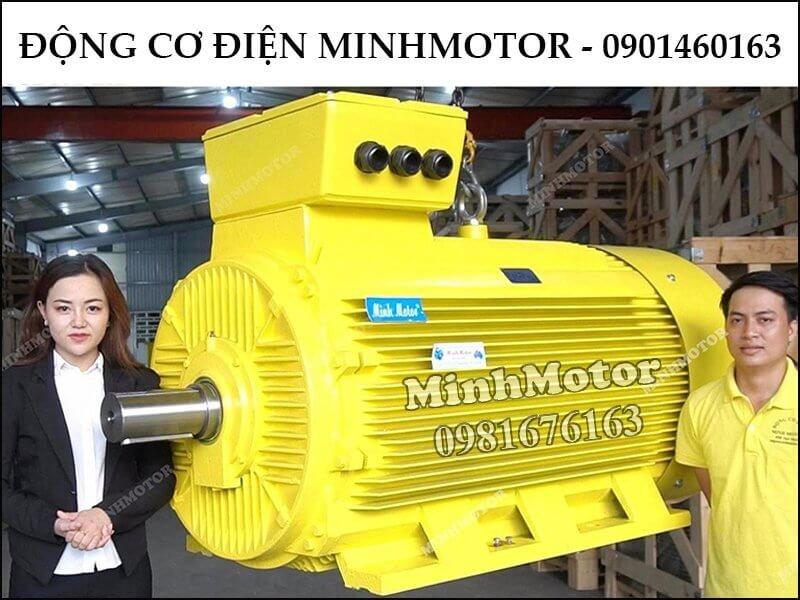 Motor điện công suất lớn