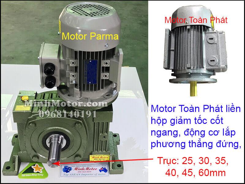 Vận hành motor Toàn Phát 3 pha 220v