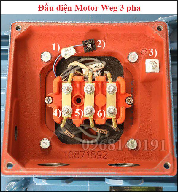 Đấu điện motor Weg 3 pha