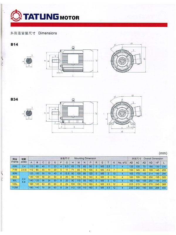 Thông số kỹ thuật motor Tatung