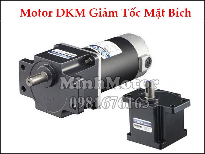 Motor DKM AC mặt bích