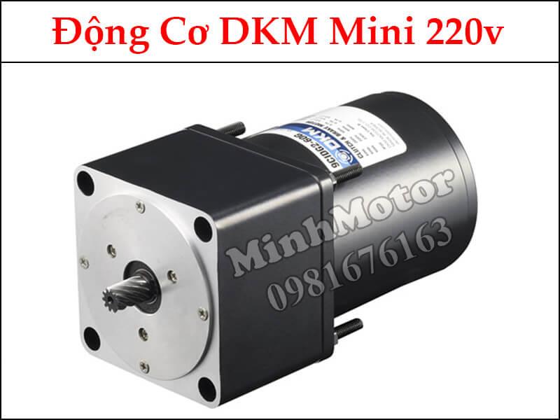Động cơ dkm mini 220v