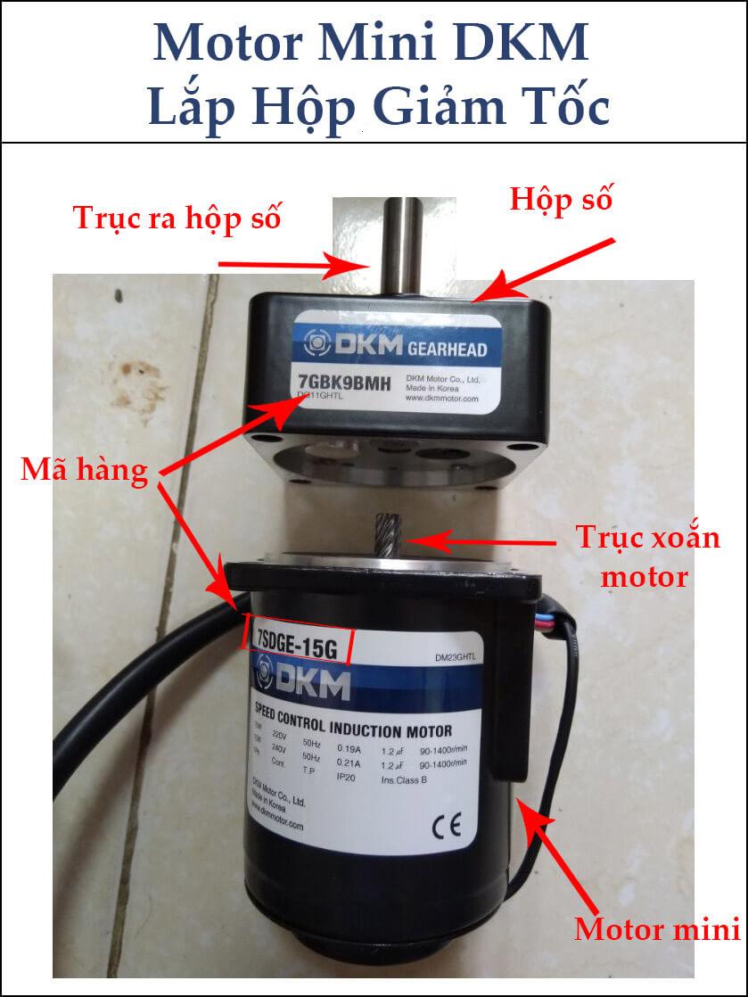 Motor DKM mini lắp hộp giảm tốc