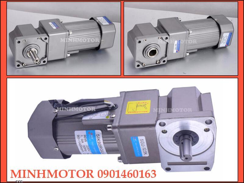 Motor giảm tốc cốt âm mini điều chỉnh tốc độ