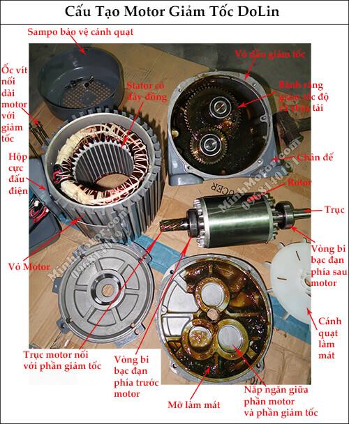 Cấu tạo motor giảm tốc Dolin