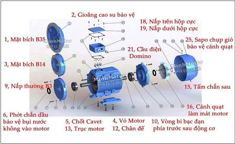 Cấu tạo motor gắn động cơ trục vít