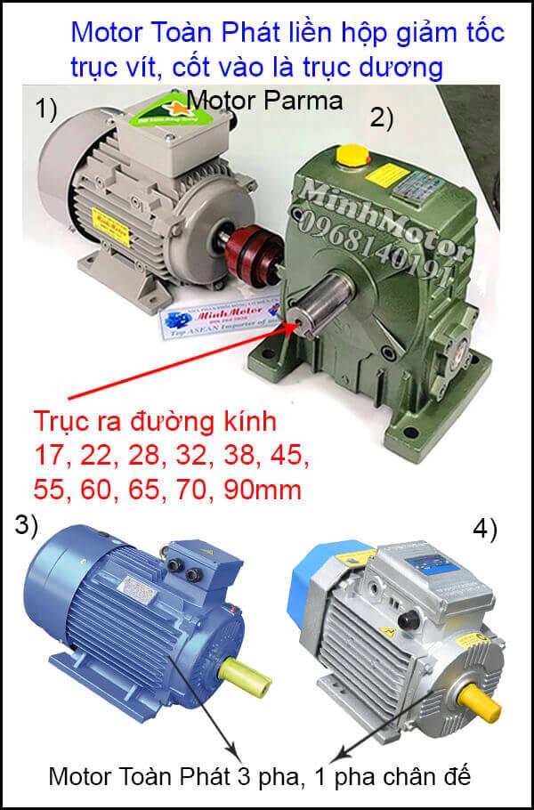 Motor Toàn Phát 3 Pha chân đế lắp đặt khớp nối