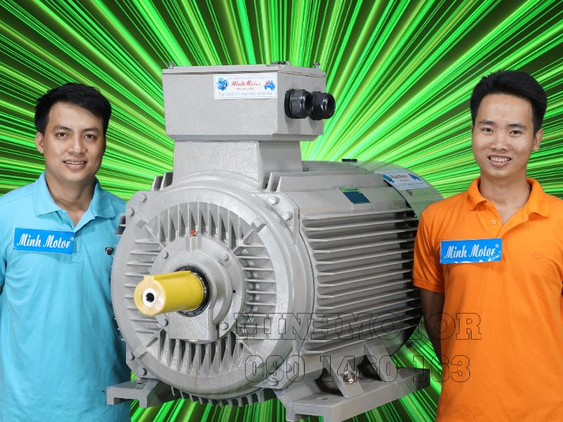 Giá motor điện 3 pha - giá động cơ điện 3 pha