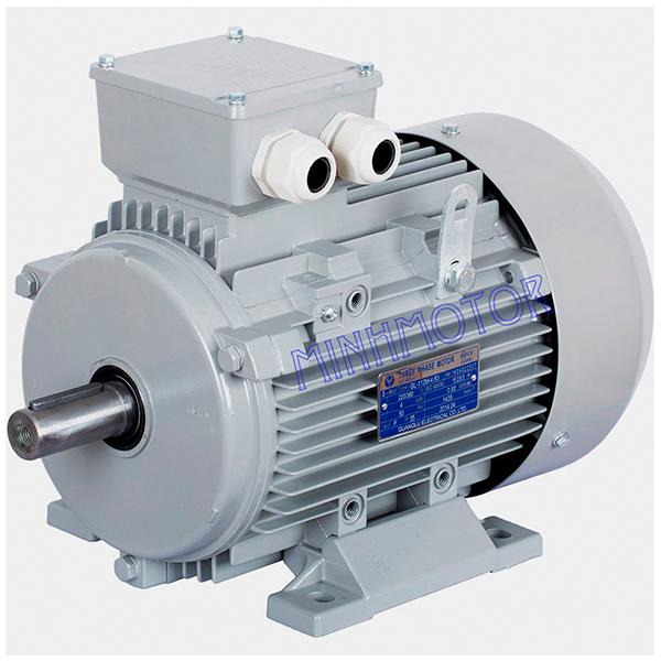 Động cơ điện 4kW – Motor điện 4kW 3 pha 5 HP 380V/660V