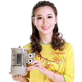 Electric motor Vietnam in Chinese language