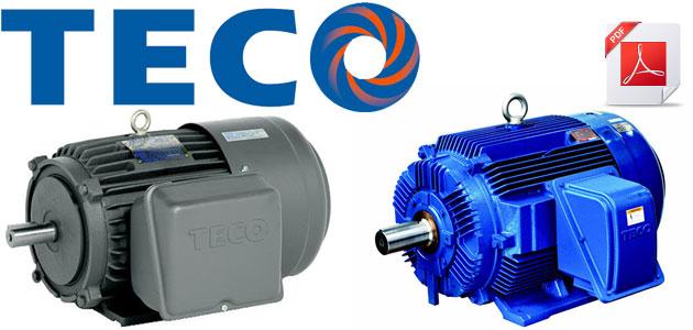 Motor 3 pha teco