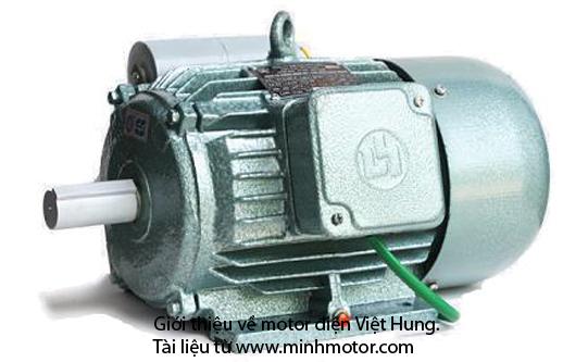 Motor dien Viet Hung