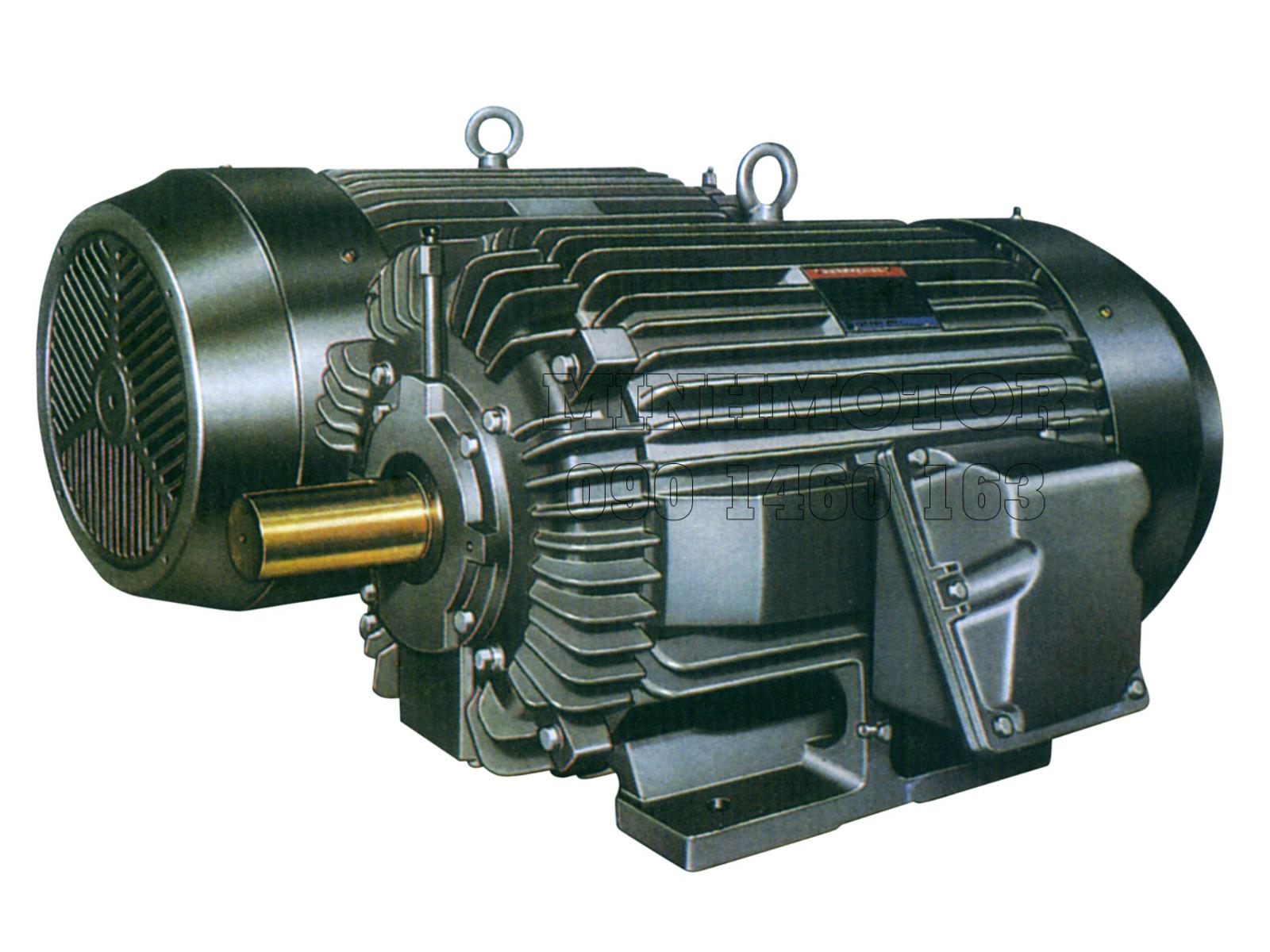 Giá Motor Điện Tatung 3 Pha Tháng 06/2021