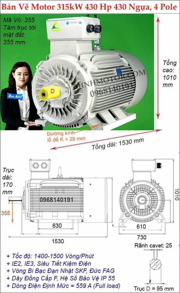 Motor điện Đài Loan công suất lớn