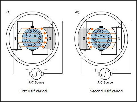 Sơ đồ đấu dây của chiếc máy xay hoa quả sử dụng động cơ vạn năng