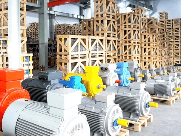 Động cơ điện đóng vai trò rất quan trọng, quyết định đến tốc độ sản xuất hàng