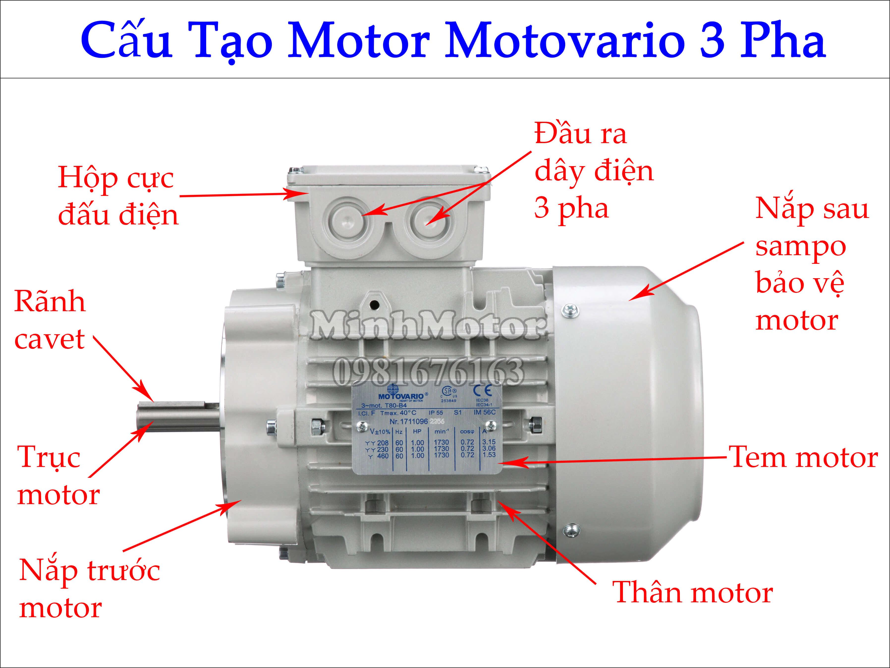 Top 5 loại Động Cơ Motovario Chính Hãng Bán Chạy Nhất Việt Nam và Châu Âu