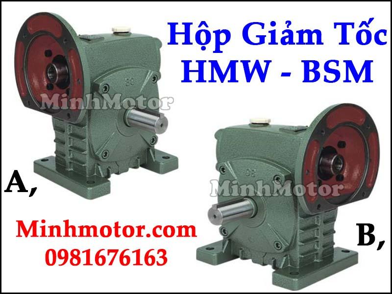 Hộp giảm tốc HMW BSM Đài Loan