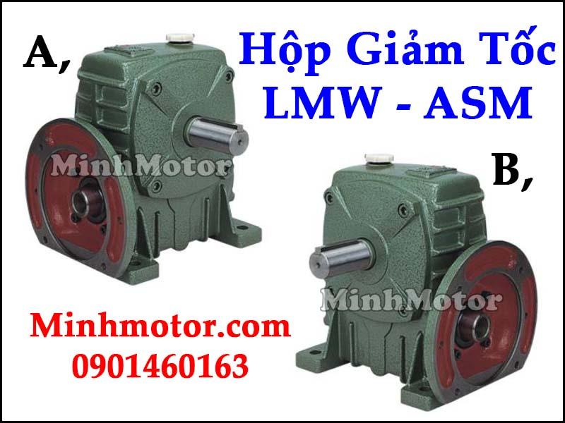Hộp giảm tốc LMW ASM Đài Loan