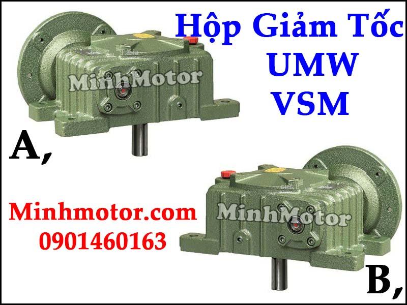 Hộp giảm tốc UMW VSM Đài Loan