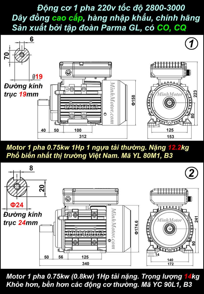 Bản vẽ động cơ 1 pha 0.75kw 1HP chân đế