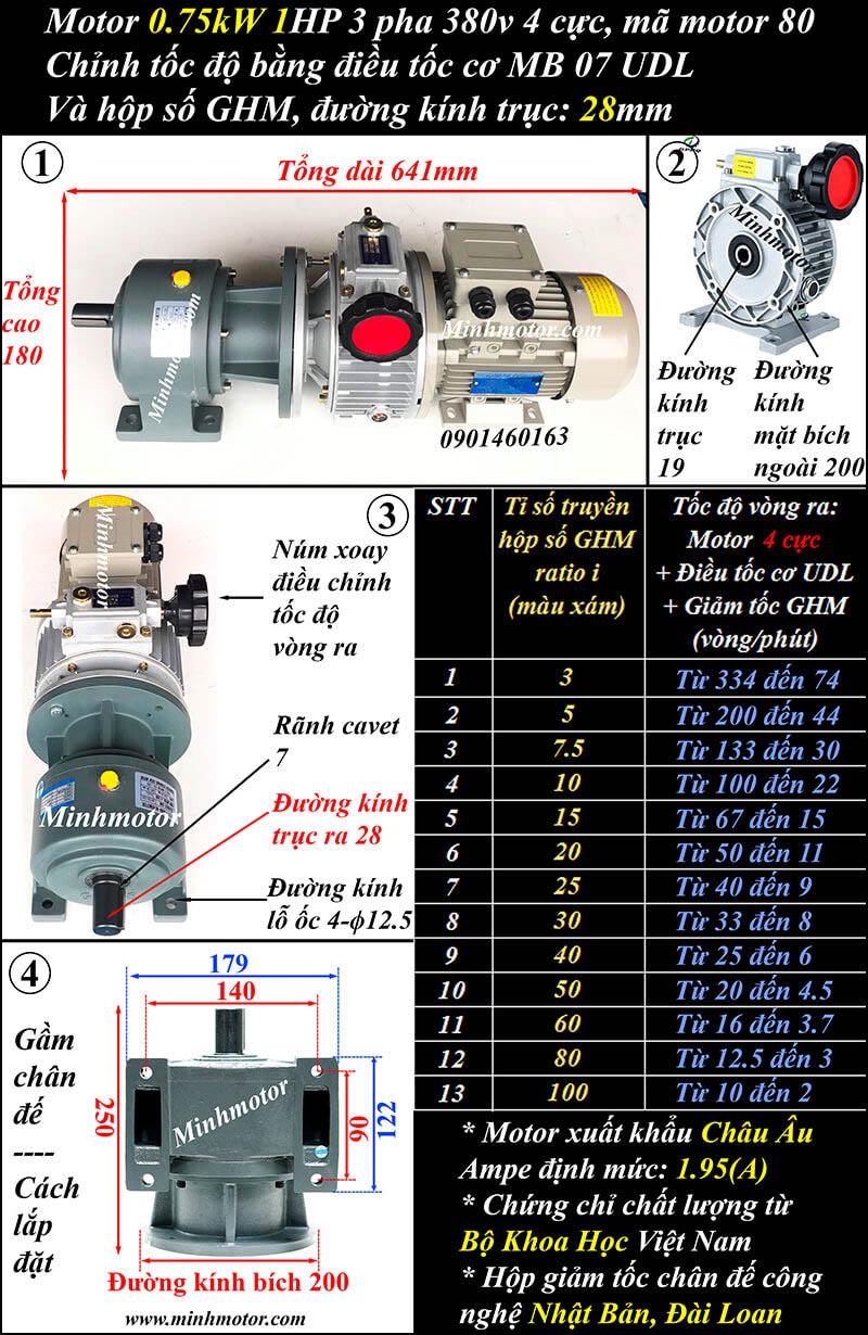 Bộ điều chỉnh tốc độ motor 0.75kw 1hp trục thẳng, đầu giảm tốc GHM trục 28