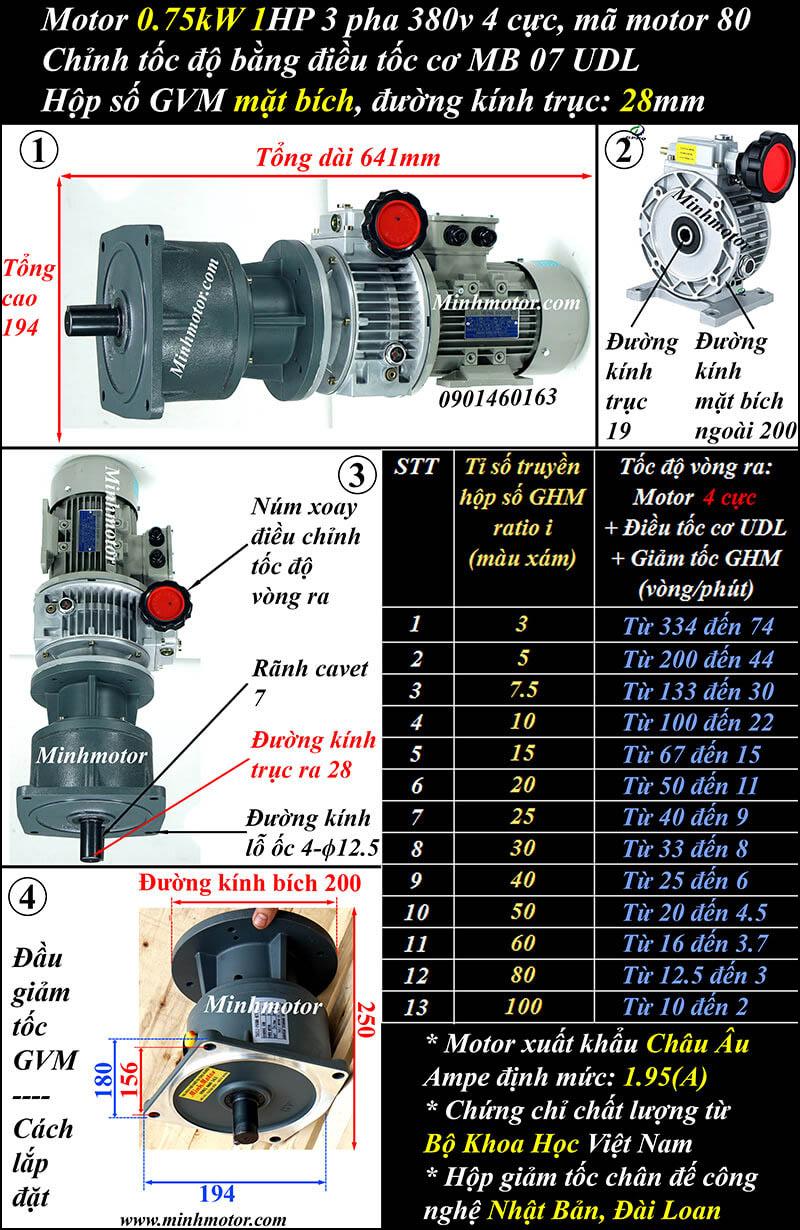 Bộ điều chỉnh tốc độ motor 0.75kw 1hp giảm tốc mặt bích, hộp số GVM trục 28
