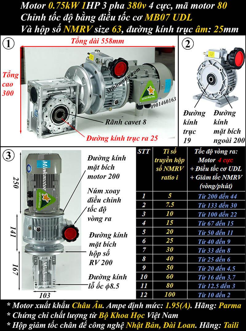 Bộ điều chỉnh tốc độ motor 0.75kw 1hp hộp số NMRV trục vuông góc size 63
