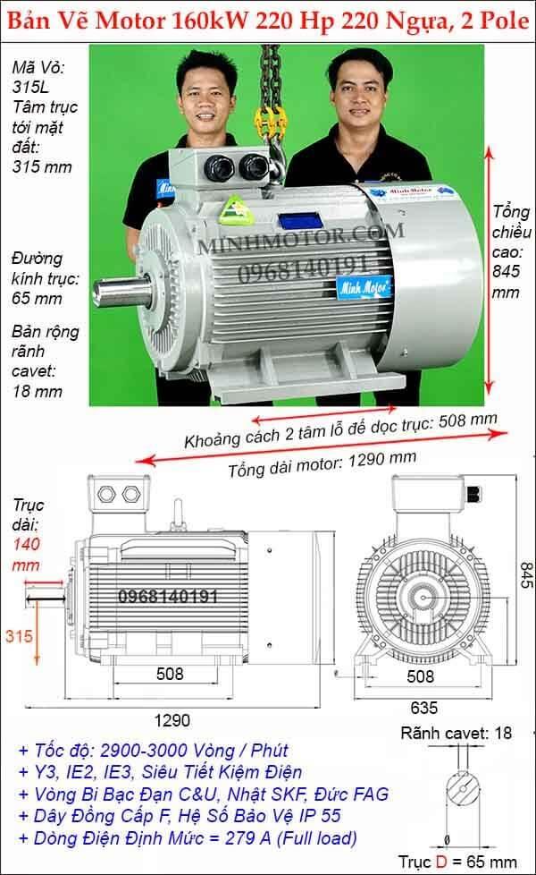 Bản vẽ động cơ điện 220Hp 160Kw 2 Cực điện