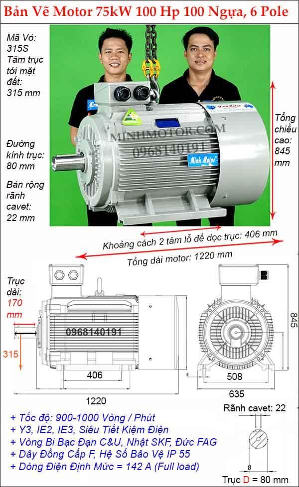 Bản vẽ kích thước Động Cơ Điện 3 Pha 100Hp 75Kw 6 Pole