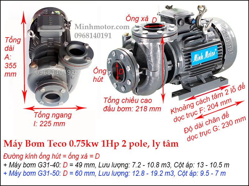 Bản vẽ máy bơm nước Teco 0.75kw 1Hp 2P