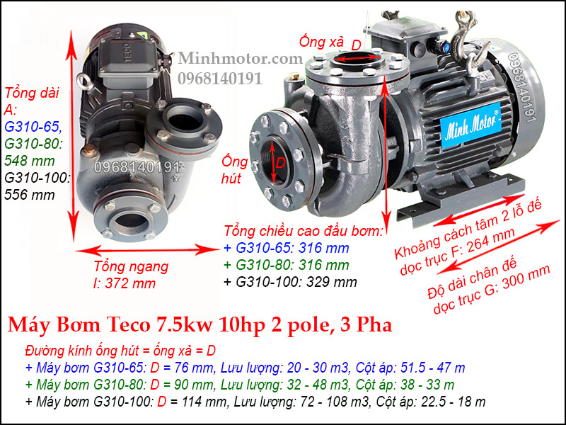 Bản vẽ máy bơm nước Teco 7.5kw 10Hp, 2P