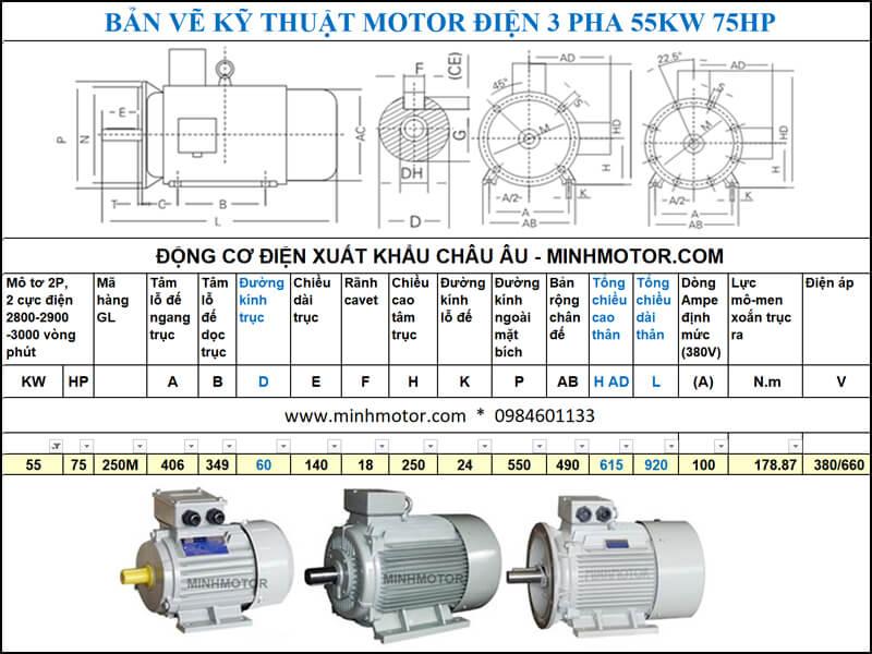Thông số kĩ thuật bản vẽ động cơ điện 75Hp 55Kw 2 Cực điện