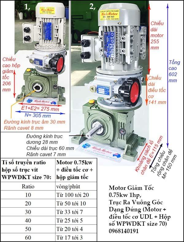 Bộ điều chỉnh tốc độ động cơ 3 pha 0.75kw 1hp hộp giảm tốc đứngWPWDKT size 70
