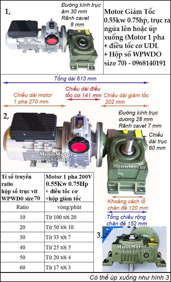 Motor 1 pha 0.55kw 0.75hp chỉnh tốc độ, trục ngửa, úp WPWDO size 70