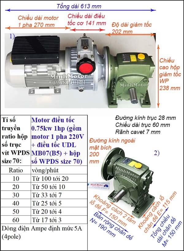 Bộ biến đổi tốc độ motor 1 pha 0.75kw 1hp WPDS size 70