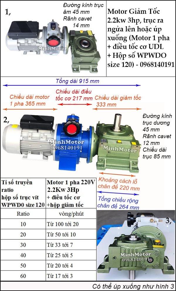 Motor 1 pha 2.2kw 3hp chỉnh tốc độ, trục ngửa, úp WPWDO size 120