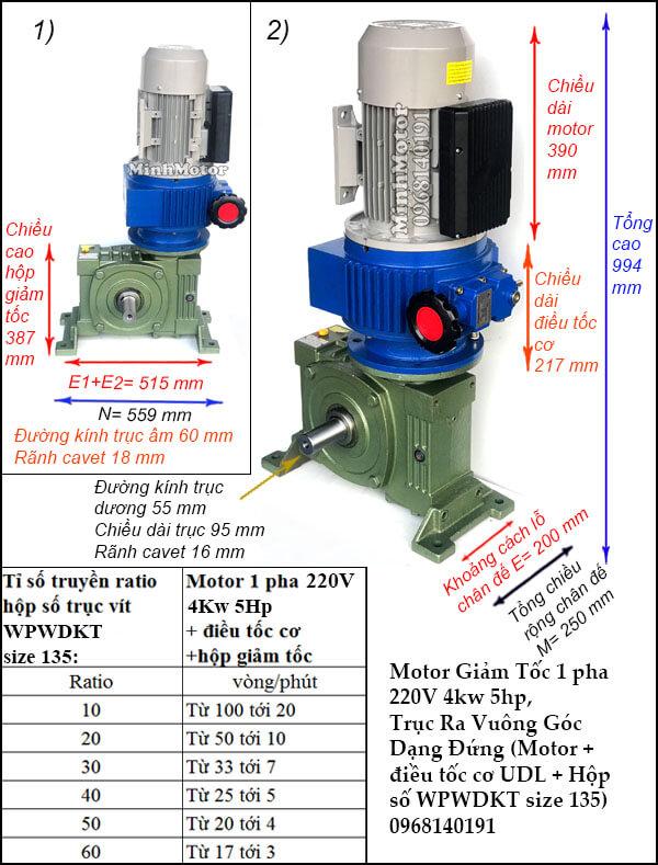 Bộ điều chỉnh tốc độ motor 220V 3.7Kw 4Kw 5Hp, WPWDKT size 135
