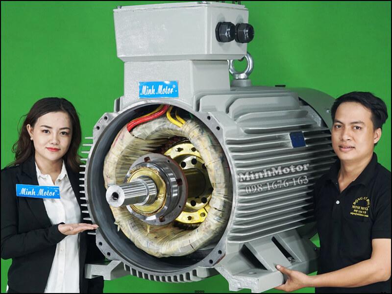 Cấu tạo bên trong Motor điện 3 pha 75kw 100HP 4 pole