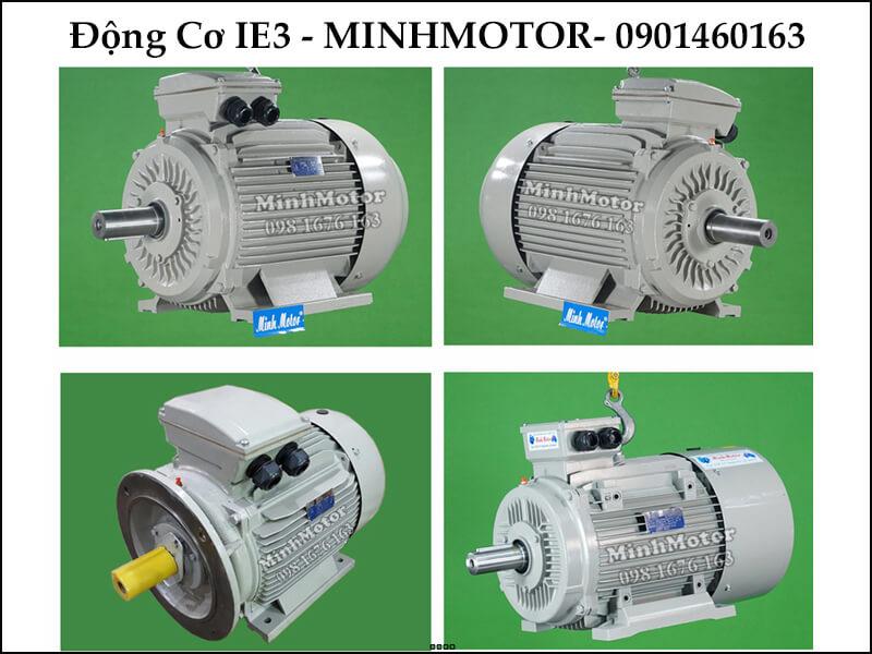 Motor IE3 150Hp 110Kw 6 cực điện