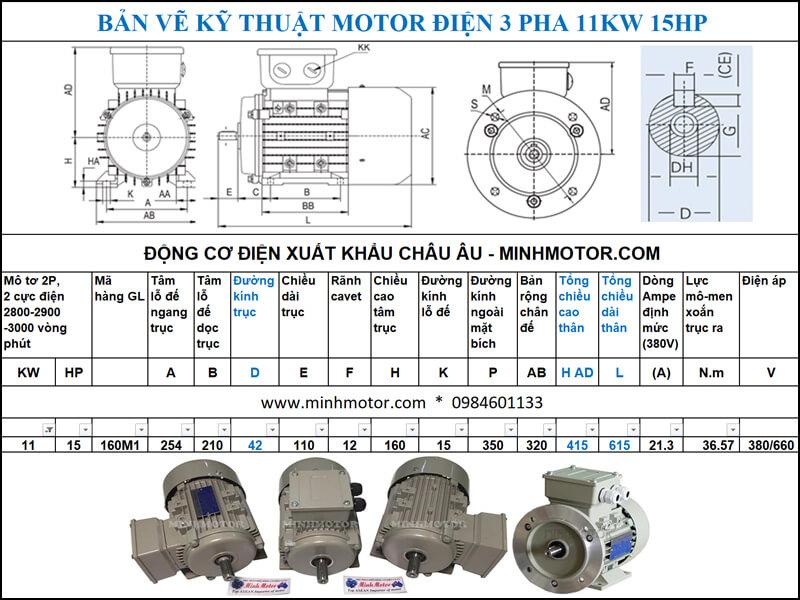 Thông số kĩ thuật bản vẽ động cơ điện 15HP 11kw 2 Pole