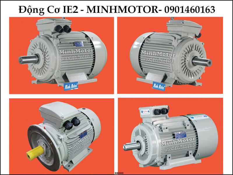 Motor IE2 180Hp 132Kw 6 cực điện