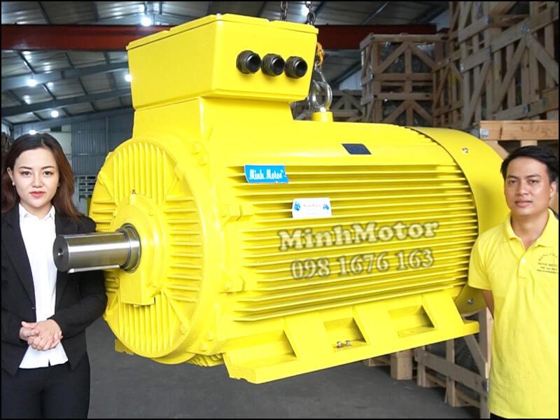 Động Cơ Điện 3 Pha công suất lớn high power motor