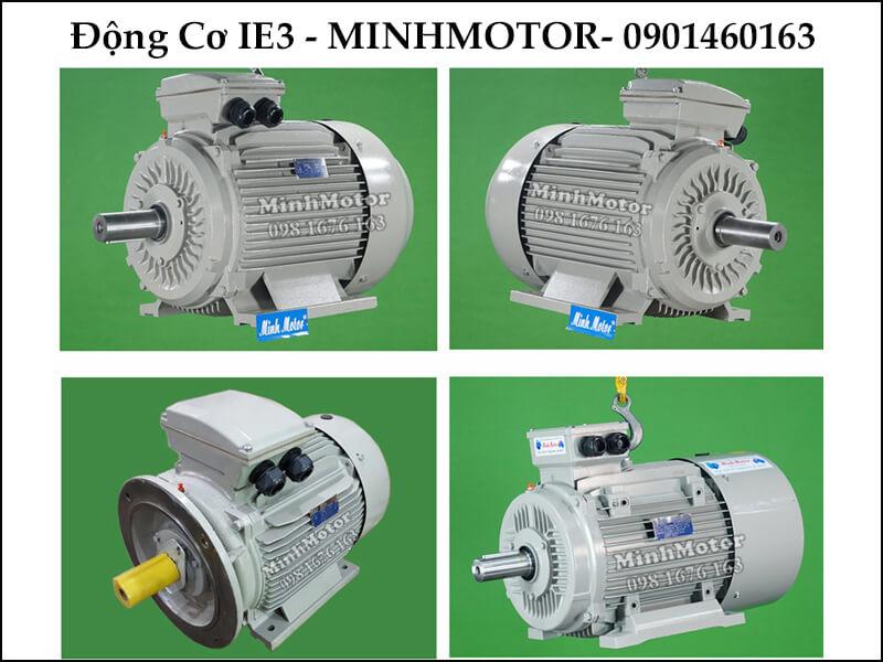 Motor Điện 30Kw IE3 tiết kiệm điện cao cấp